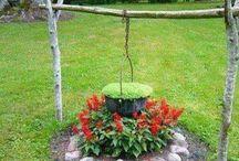 rostlinky a zahrada