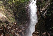 Costa Rica / Costa Rica Rain Forest, waterfalls, Cloud Forest https://womentravelingtheworld.com/tour/costa-rica/