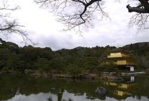 World Heritage Site / World heritage site i've ever visited