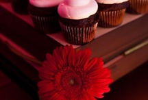 Cupcakes / Cupcakes. They're petite, sweet and I could live off of them.