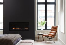 Black and fawn interiors
