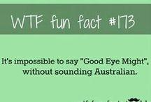 wtf fun facts