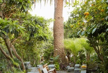 Garden Spaces / by Adeline