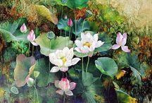 Lotus ✨