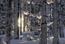 - inverno -