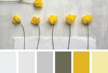 Colour palatte