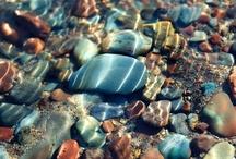 Sea shell / stones