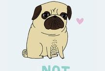 pug lover / by Groovy Crochet