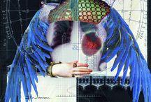 collage / by Pamela Rogalski