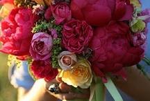Beautiful Flowers / by Marissa Rose