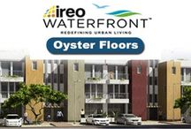 Ireo waterfront oyster floors
