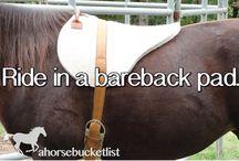 Bareback pads
