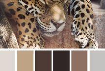 Palety kolorów - inspiracje kolorystyczne