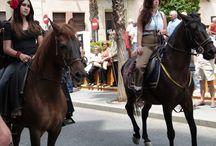 Feria de Mayo Torrevieja 2014 / Feria de Mayo Torrevieja 2014