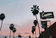 CA love