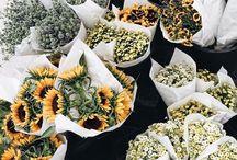 life // flowers