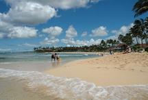 Kiahuna #167 / Condo on beautiful Poipu Beach in the garden island, Kauai.  http://www.kauai-kiahuna.com