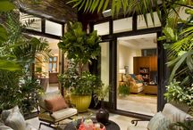 Interior design sunroom