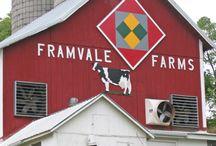 wish i had a barn / by Lori Martindale