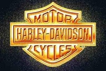 Harley Davidson Bikes / by Ann Beebout Williams
