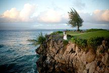 Ritz Carlton Kapalua Weddings / Weddings at the Ritz Carlton Kapalua, Maui
