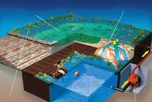 piscina organica