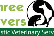 New Jersey Veterinarians Who Practice One or More Modalities in Holistic and Integrative Veterinary / http://www.bestcatanddognutrition.com/roger-biduk/list-of-900-u-s-holistic-integrative-veterinarians/