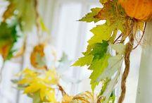Fall / by Mellissa R. Wood