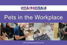 VetShopAustralia Videos, Advice & Tips