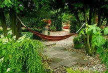 grown garden in galore