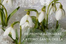 Frasi per ispirare. Magic Inspired Living by Elena Agrizzi