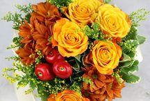 Szép virágok Judittól