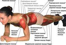 Фитнес / Здоровый образ жизни