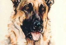 Dog Paint