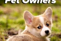 Dog Tips / Useful tips for Dogs
