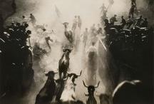 Fotos de otros / Fotos de fotógrafos anónimos o desconocidos por mi. Amateurs  o profesionales.  / by Fernando Mora