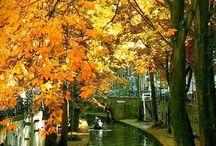 Amsterdam & Netherlands