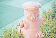 Fire hydrants....