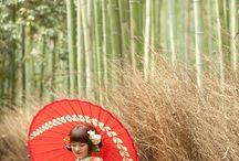 嵐山 ARASHIYAMA