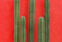 •Cactus