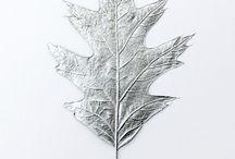 .colore: argento