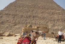 IL CAIRO / Settembre 2013