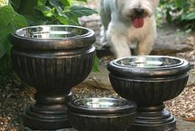 Dog Dishes / Dog dishes / by Old Mill Doodles