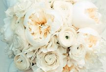 Wedding; Bouquets / by Kati Witzig