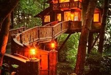 Inspiring cool tree houses