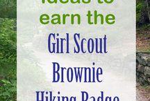 Brownie Badge work