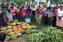 Community Farming