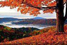 Autumn / That autumn feeling