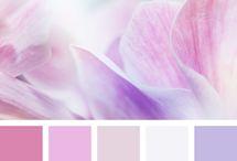 Couleurs - Colors