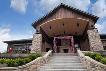 Weddings / Celebrate your wedding at the perfect Cleveland Metroparks venue, like a romantic spot within the park, a wild time in Stillwater Place at the Zoo or a step back in time at Squire's Castle.